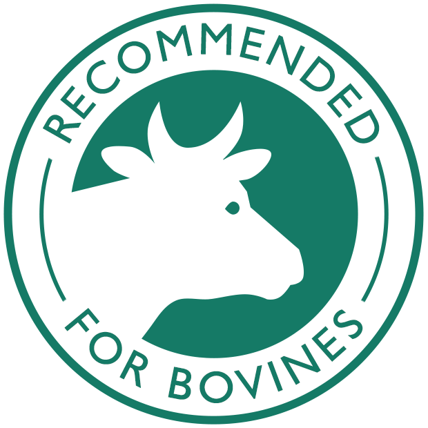 Recommended for bovines