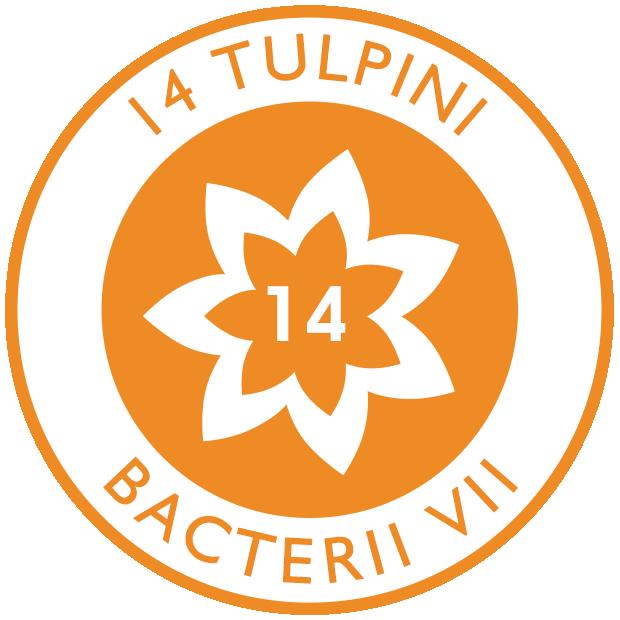 14 tulpini de bacterii vii